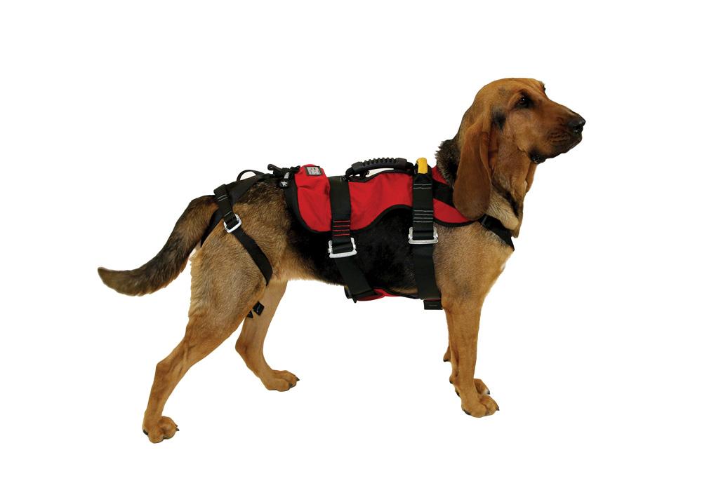 890224 1 k9 rappel harness cmc pro