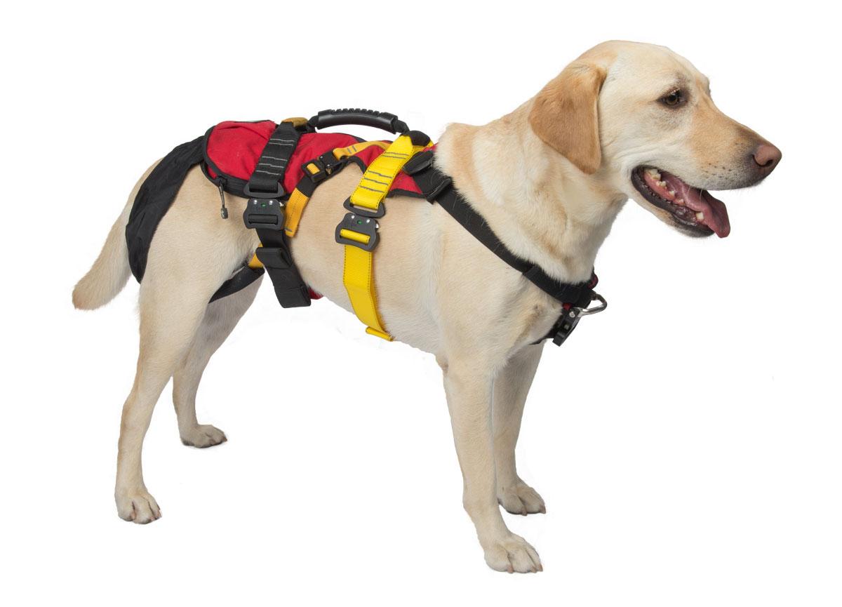 K9 Lifesaver Harness